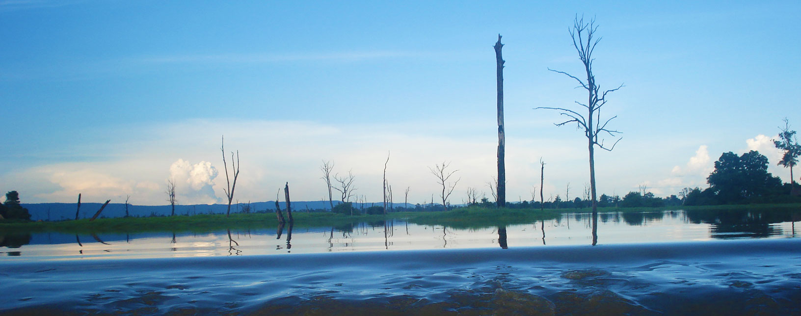 The Flooded Forest in Anlong Veng