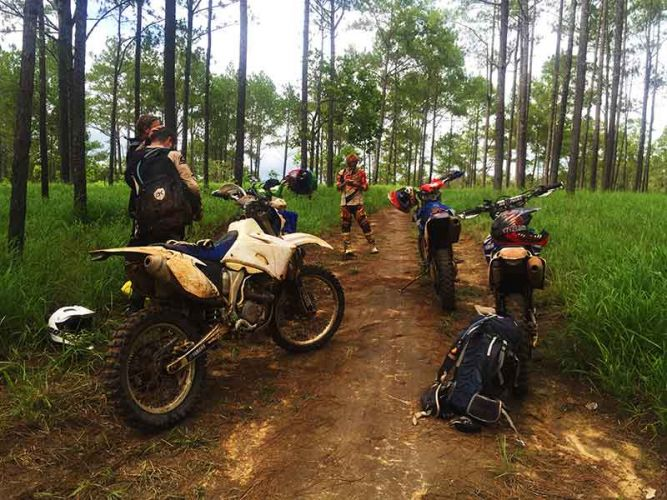 dirt-bike-tours-cambodia-kirirom-trees