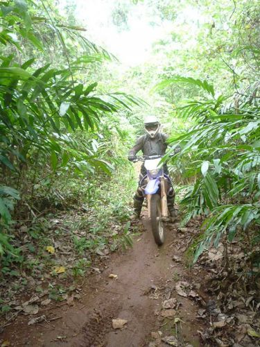dirt-bike-tours-cambodia-jungle