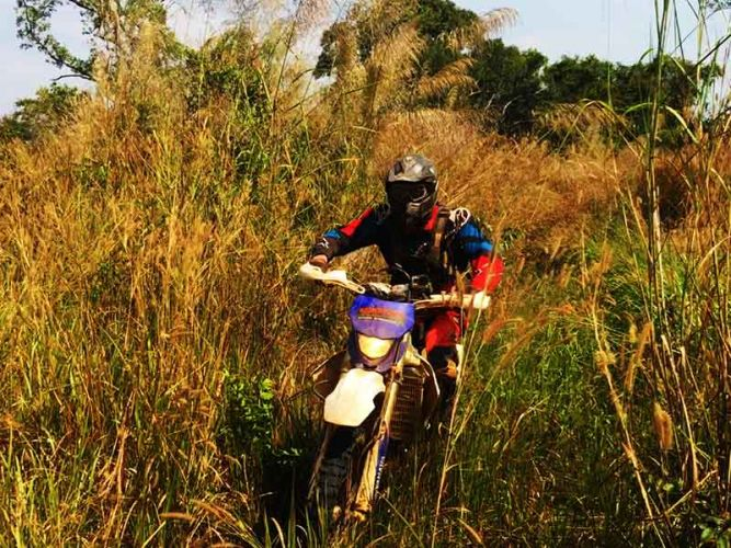 dirt-bike-tours-cambodia-bush