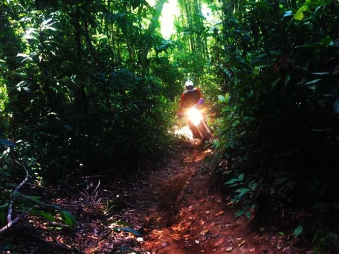 dirt-bike-tours-cambodia-kulen-single-track
